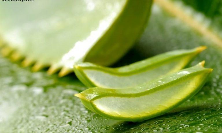 بواسیر را با داروهای گیاهی درمان کنید